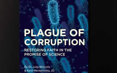 Plague of Corruption – Is This Treason?
