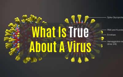 The Shocking Truth of Virus's & Vaccines